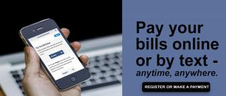 pay your taxes remotely