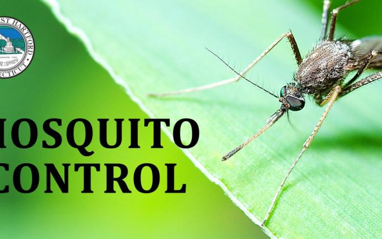 east hartford mosquito control